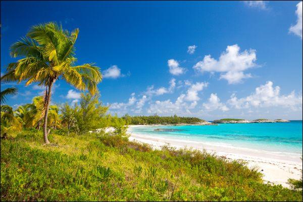 Histoire – Quel peuple amérindien Christophe Colomb a-t-il rencontré sur une île bahaméenne ?