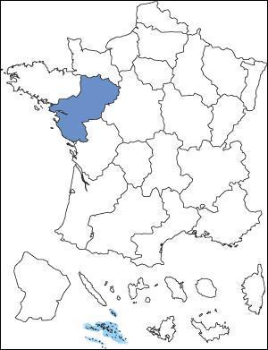 Quelle région est représentée en dessous ?