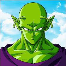 Dans quel manga peut-on voir Piccolo ?
