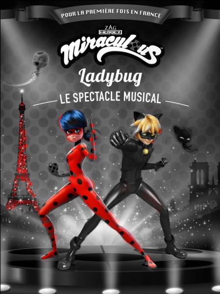 """Dans """"Miraculous"""", quel est le vrai prénom de Ladybug ?"""