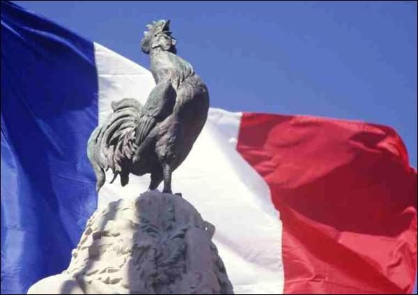 Le coq gaulois n'a jamais été l'emblème des Gaulois, qui lui préféraient l'alouette. L'origine de l'association entre l'animal de basse-cour et la France s'explique ainsi :