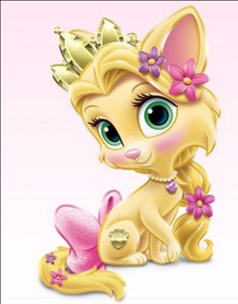 Derrière ce chiot, on reconnaît tout de suite notre princesse.