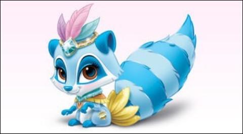 Ce raton-laveur tout bleu est super joli. Il nous fait immédiatement penser à une princesse en rapport avec cet animal. C'est :