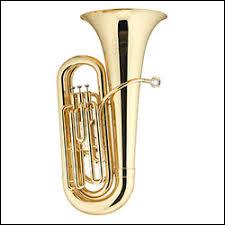 À quelle catégorie d'instruments, le tuba appartient-il ?