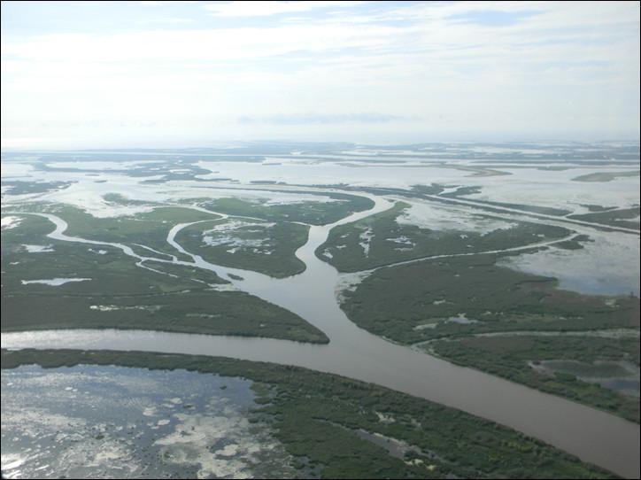 Dans quel Etat se trouve le delta du Mississippi ?