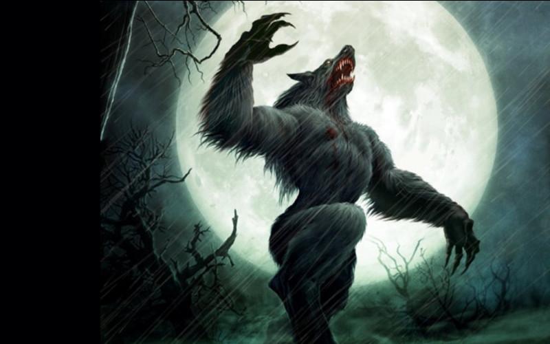 Mais qui était ce terrible loup-garou ?