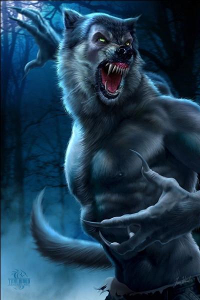 Au cours de quelle année le groupe découvre-t-il que Remus est un loup-garou ?