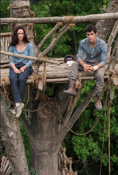 Quand Teresa sort du coma elle est en haut d'une grande échelle (tour en bois) et elle jette des cailloux sur les blocards.