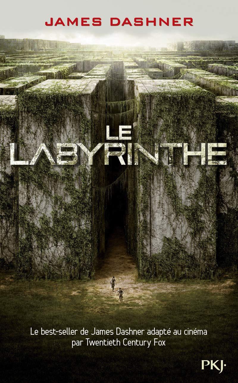 Le Labyrinthe 1 (film ou livre ?)