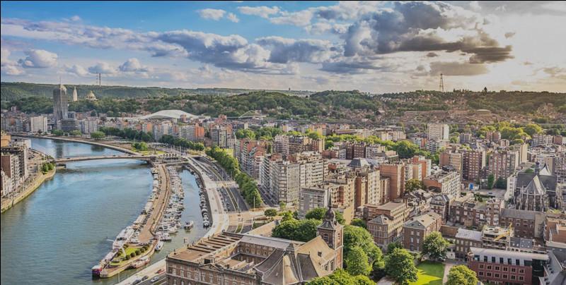 Grande ville belge de Wallonie, traversée par la Meuse :