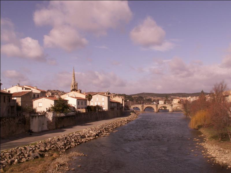 Dans quel département français se situe la ville de Limoux ?