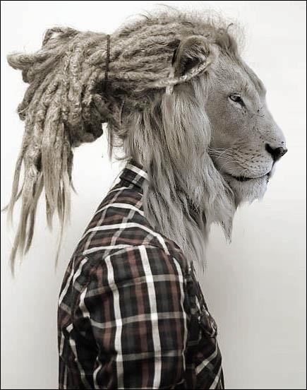 Fils de Mégare et de Mérope, la déesse Cybèle le changea en lion. Qui est-il ?