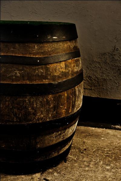 En 2018, où ont été découvertes les plus anciennes traces de fabrication de bière ?