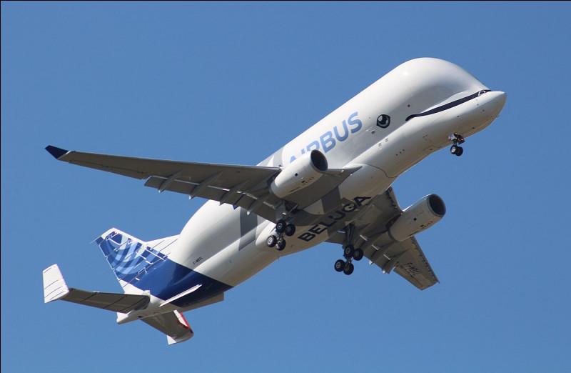 C est parti, oui je sais on commence par un avion cargo mais bon... Lequel est-ce ?