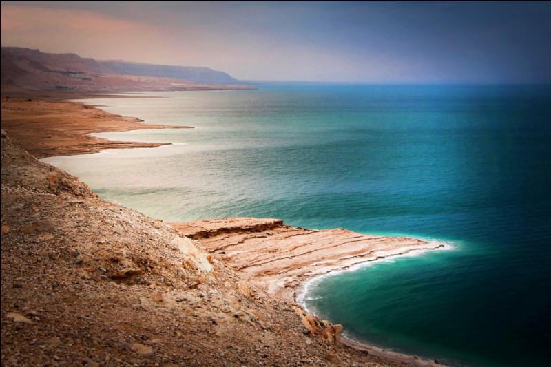 Quelle n'est PAS une des particularités de la mer Morte ?