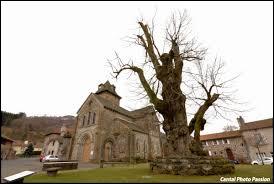 Nous terminons notre balade dans le Cantal, à Saint-Simon. Village traversé par la Jordanne, il se situe en région ...