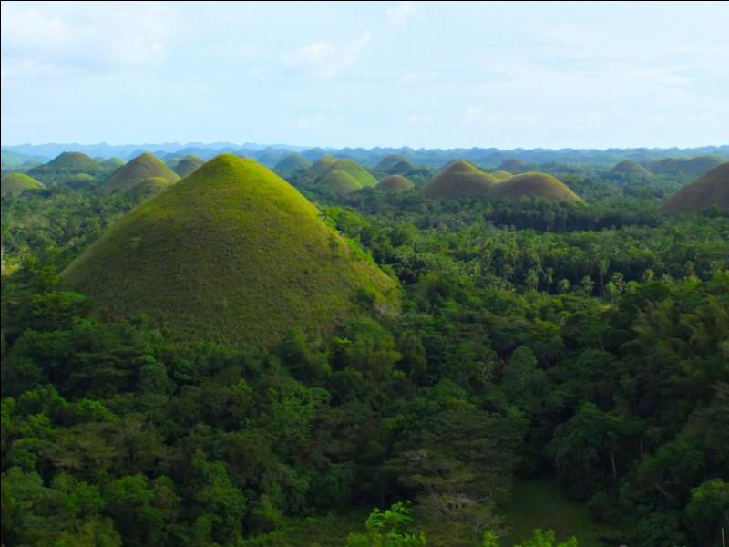 C'est en 1976 que la NASA a photographié de haut ces pyramides, au coeur de l'Amazonie : à quoi avons-nous à faire ?
