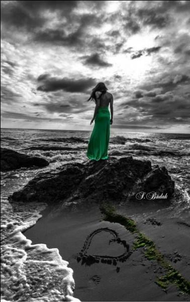 """Qui chantait """"Savoir aimer sans rien attendre en retour, ni égard ni grand amour, pas même l'espoir d'être aimé"""" ?"""