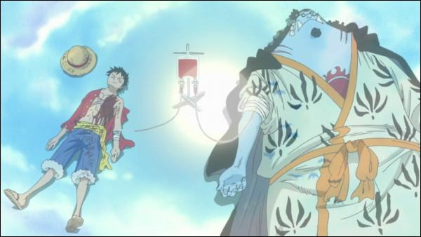 À quel groupe sanguin appartient Luffy ?