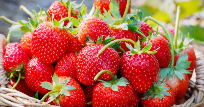 Océane achète des fraises à 1,10 € la baquette de 250 grammes.Océane donne un billet d'un billet de 10 €.Combien la caissière doit-elle rendre à Océane ?