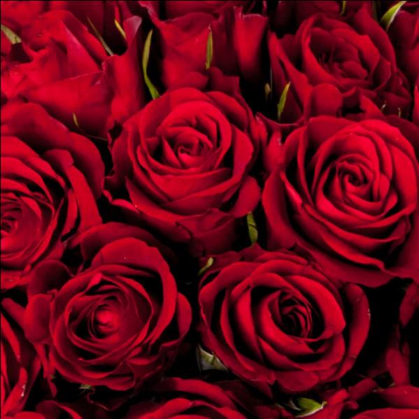 Il y a 30 roses rouges dont 6 sont fanées. Combien de roses rouges reste-t-il au final ?