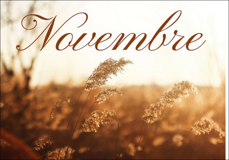 """Comment dit-on """"novembre"""" ?"""