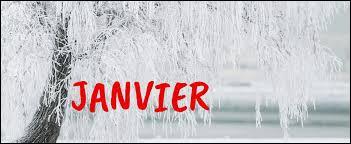 """Comment dit-on """"janvier"""" ?"""
