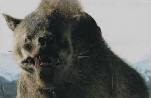 Quel est le vrai nom des 'Loups de l'Isengard' ?