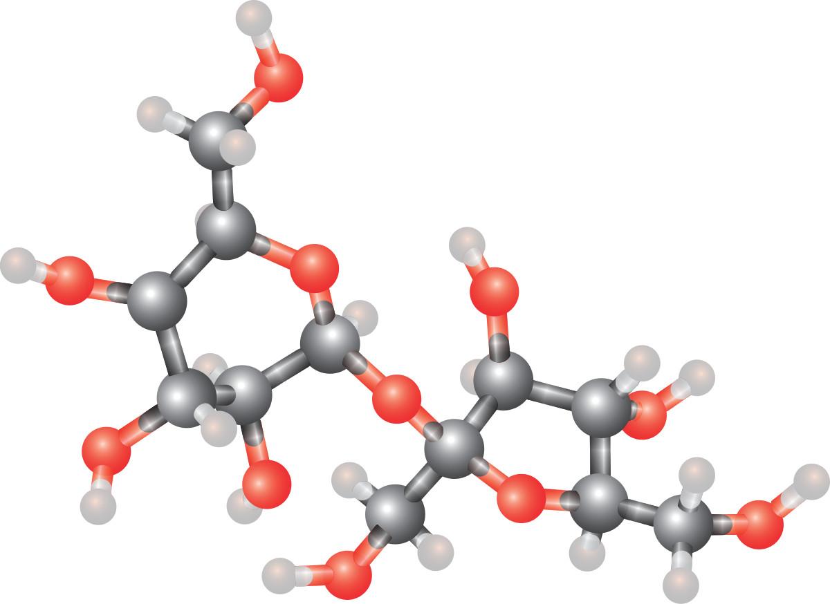 Une molécule et ses atomes