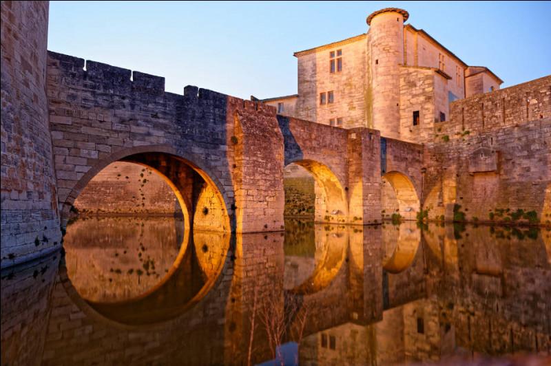 Dans quel département la ville d'Aigues-Mortes est-elle située ?