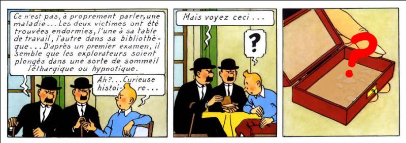 Pour une fois, les Dupondt sont sérieux : que montrent-ils à Tintin ?