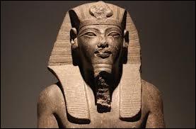 Le pharaon est le roi dans l'Égypte antique, ses sceptres sont le crochet et le fouet.