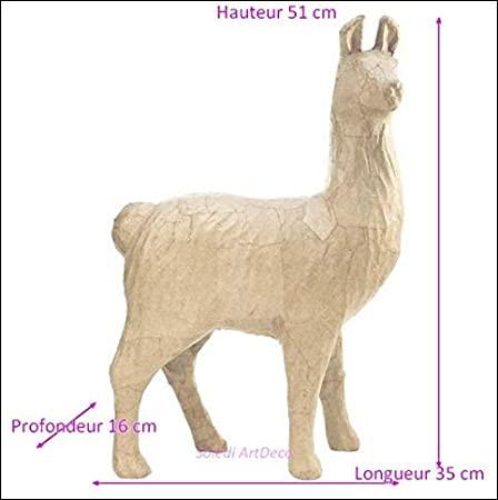 Trouve le continent sur lequel vit cet animal !