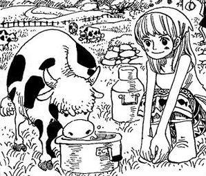 One Piece - Qui est-ce ?