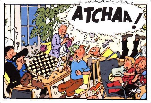 Bien sûr, il y eut quelques déboires : Tintin s'est vu infligé une amende de 250 FS dans un hôtel genevois au retour de Syldavie : pourquoi ?