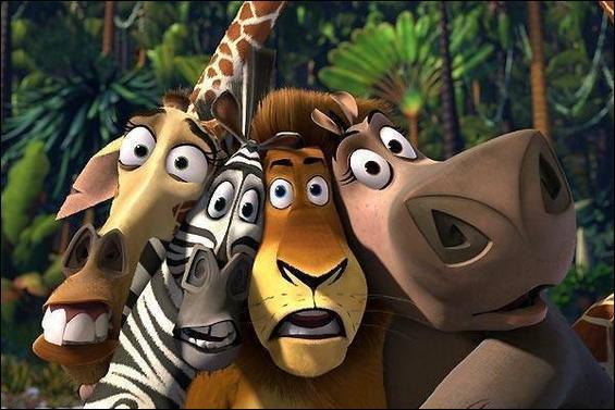 Sorti en 2005 par DreamWorks Animation, il est réalisé par Eric Darnell et Tom McGrath. Le film met en scène un lion, une girafe, un hippopotame et un zèbre. Deux suites lui seront données.