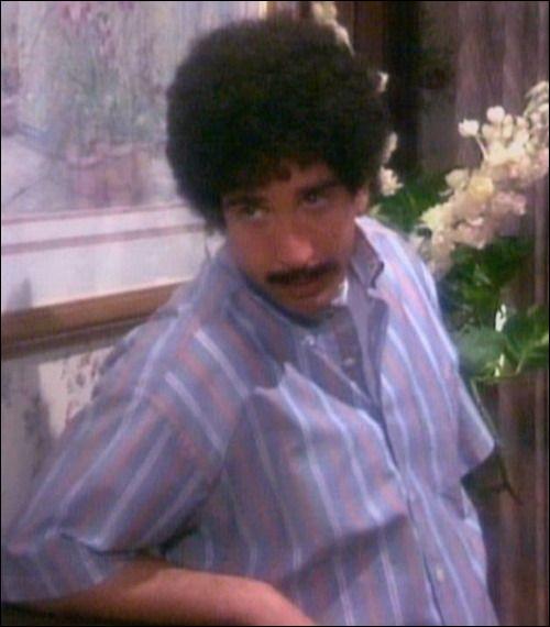Lorsque les amis retrouvent une cassette du bal de promo de Rachel et Monica, Joey fait une comparaison sur les cheveux de Ross, laquelle ?