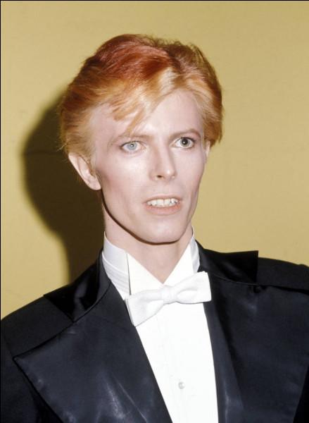Qui a fait les premières parties de David Bowie ?