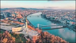 Parmi ces pays, lequel n'est pas traversé par le Danube ?