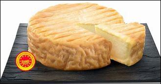 Quel est ce fromage de Bourgogne au lait de vache à pâte molle et à croûte lavée ?