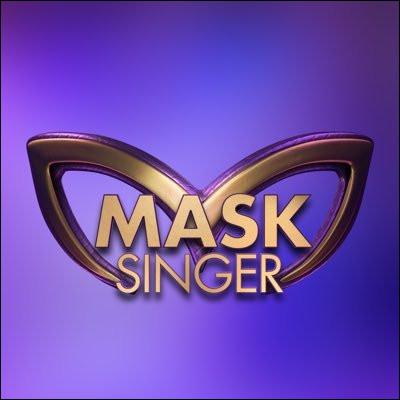 """Et puis bien sûr, il est venu, il a baptisé la soirée """"Mask Singer"""" !"""