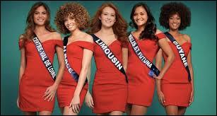 En quelle année le concours des Miss France a-t-il été créé ?