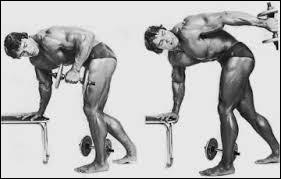 Quels muscles va-t-on travailler en faisant le kickback ?