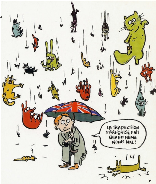 """Que signifie l'expression : """"Its raining cats and dogs"""" ?"""