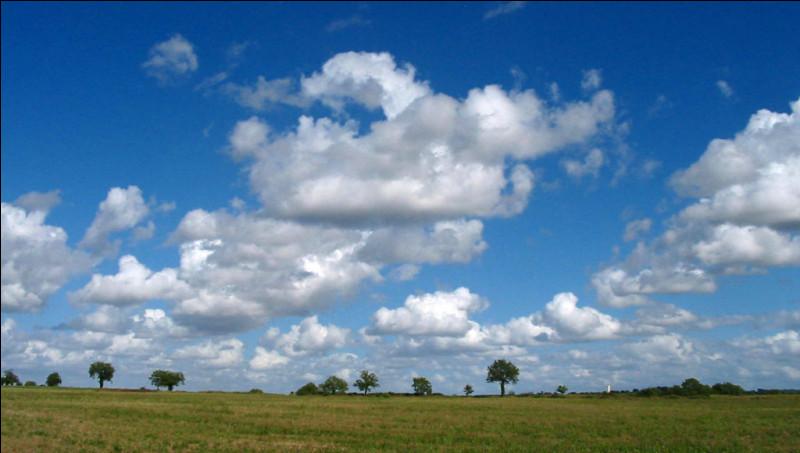 Quel est le nom de ces nuages de beau temps, en photo, dont la base est située à faible altitude ?