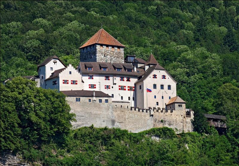 Quelle est la monnaie nationale du Liechtenstein, petit État enclavé entre la Suisse et l'Autriche ?