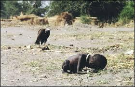 """Qui a pris cette photo nommée """"La fillette et le vautour """" ?"""