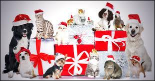Les animaux vous souhaitent un joyeux Noël !