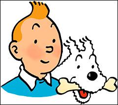Dans ''Les Aventures de Tintin'', qu'est-ce qui différencie Dupond et Dupont ?