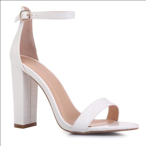 Quelle est cette couleur, celle de la chaussure et du fond ?